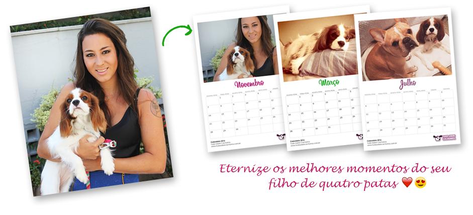 calendario_tudosobrecachorros