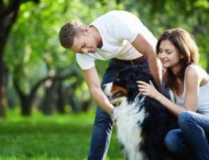 cachorro com humanos