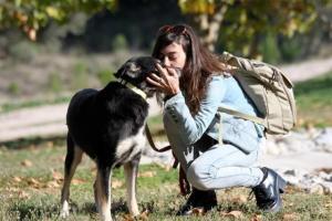 cachorro-abandonado-que-estava-virando-pedra-finalmente-aceita-convivio-com-humanos