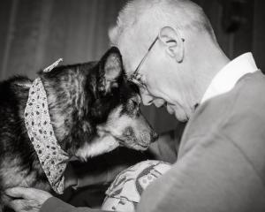 casal-de-idosos-oferece-final-de-vida-feliz-para-cachorro-com-cancer-terminal-01