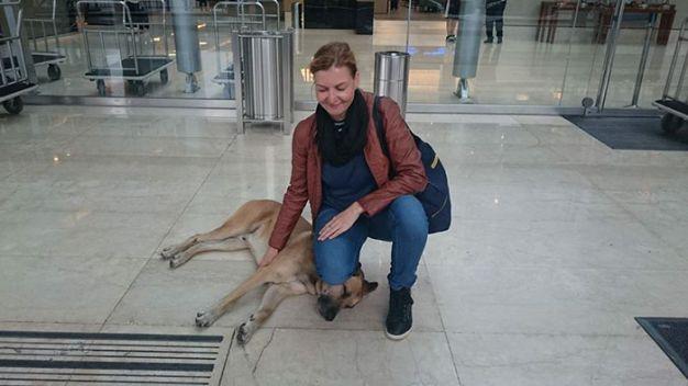 aeromoca-adota-cachorro3