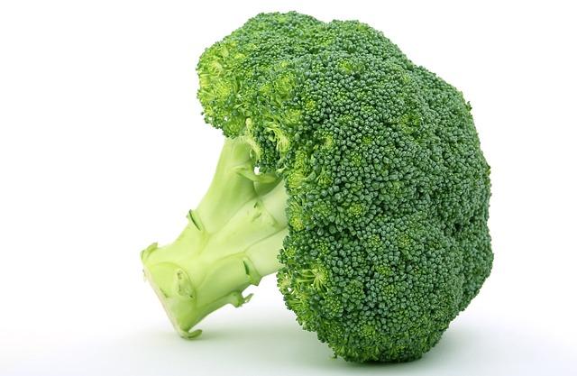 alimentos-que-previnem-o-cancer-em-caes-brocolis