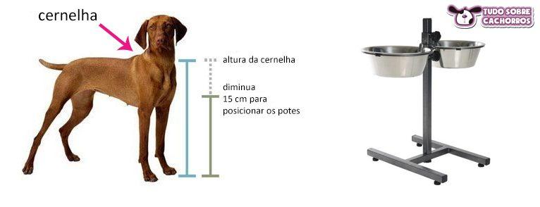altura-dos-potes-cachorro