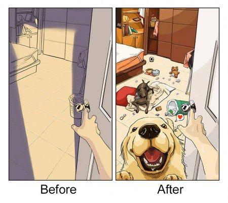 antes e depois pet 2