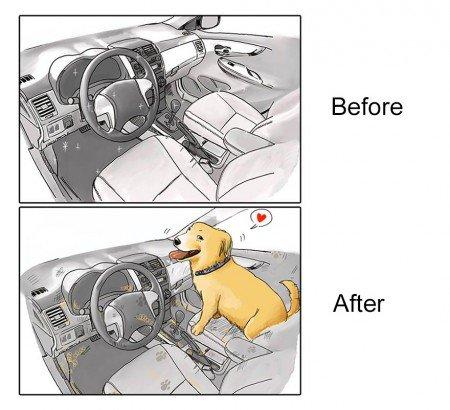 antes e depois pet 5