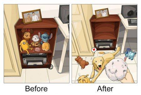 antes e depois pet 7