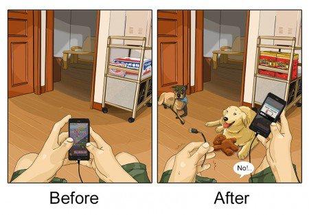 antes e depois pet 8