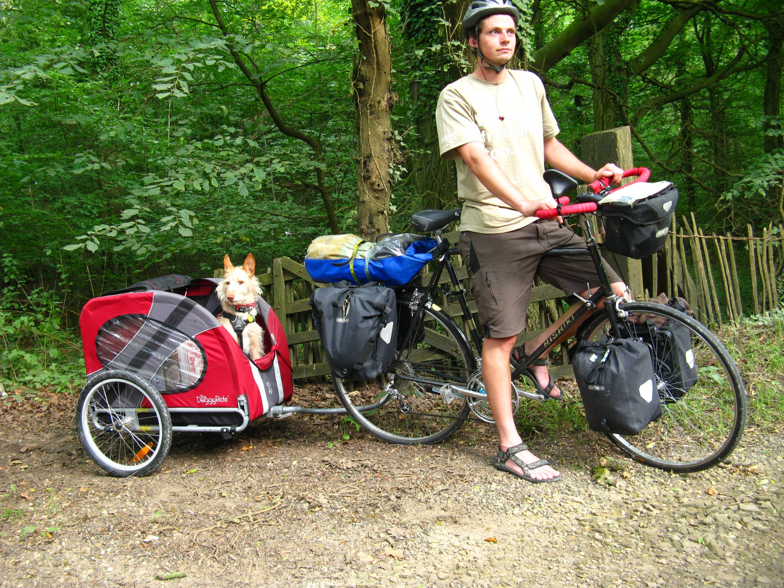 Springer Dog Bike Uk