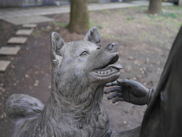 cao-hachiko-estatua-universidade-toquio-professor-ueno-02