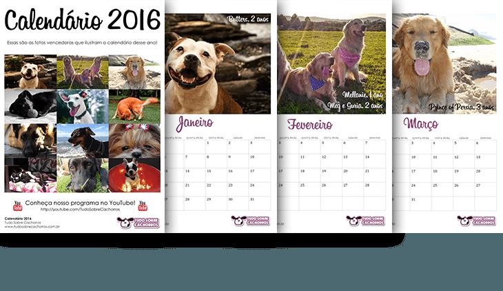 calendário-2016-tudo-sobre-cachorros