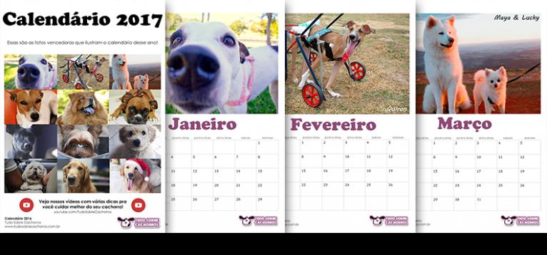 calendario-2017-tudo-sobre-cachorros