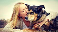 melhores raças de cachorro para pessoas com depressao
