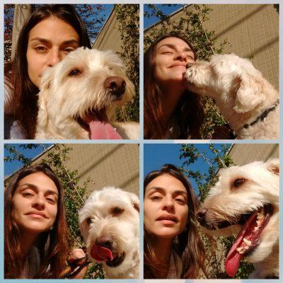 my-pets-nanny