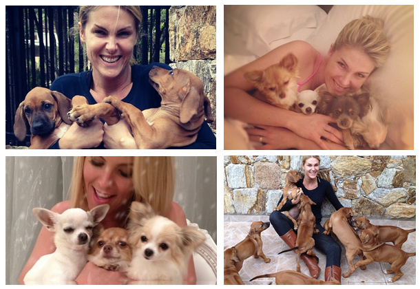 nome-cachorros-celebridades-ana-hickman