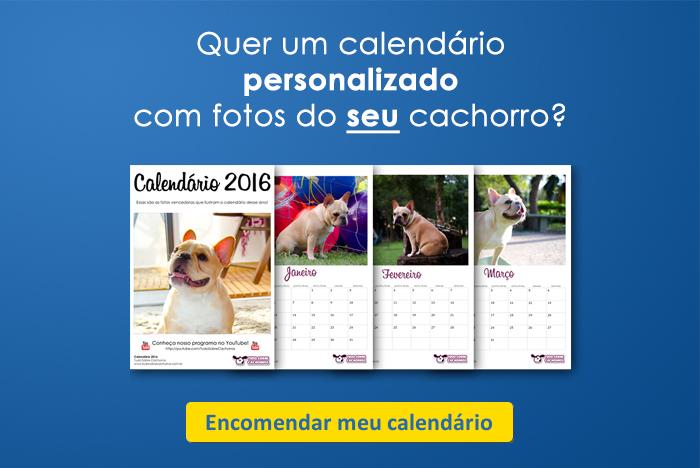 calendário tudo sobre cachorros