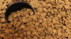 quantidade ideal de racao
