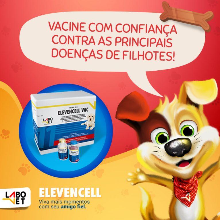 vacina-para-cachorro-nacional