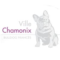 Ville Chamonix