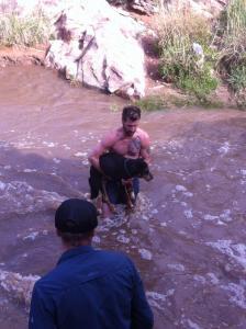 Homem-salva-cachorro-desconhecido-de-se-afogar-em-correnteza-02