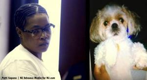 Mulher-é-condenada-a-quatro-anos-de-prisão-por-matar-cão-nos-Estados-Unidos-01