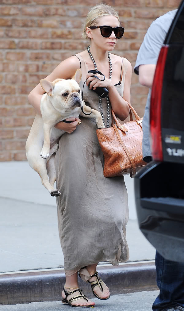 Ashley Olsen bulldog frances