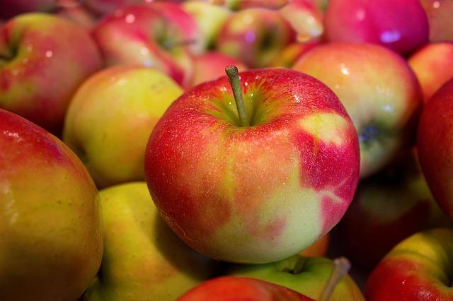 alimentos-que-previnem-o-cancer-em-caes-maca
