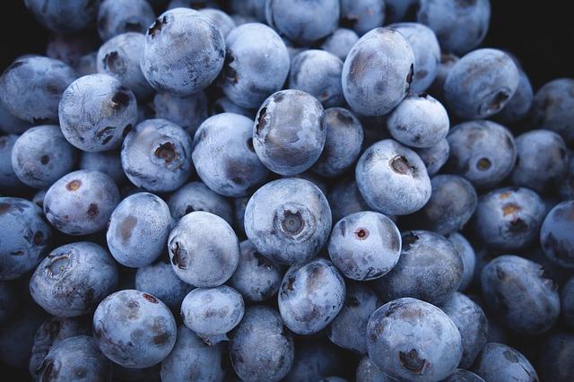 alimentos-que-previnem-o-cancer-em-caes-mirtilo