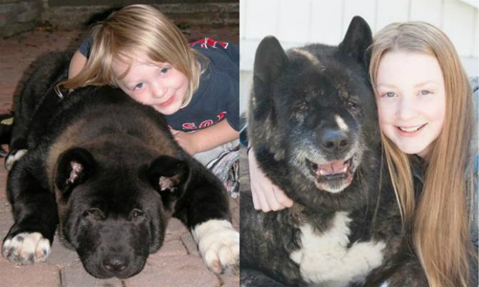 antes e depois 10 anos