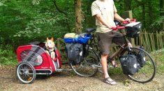 cachorro-bicicleta