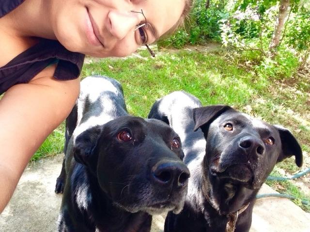 cachorro-selfie-04