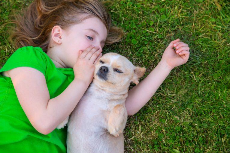 falar com cachorro