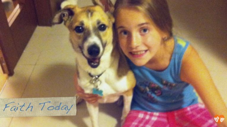 familia adota animal doente e cachorro sobrevive