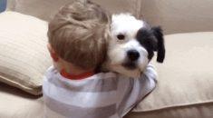 garotinho-abraca-cachorro