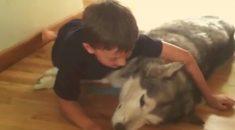 garotinho-canta-pra-cadela