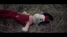gift video cachorro abandonado