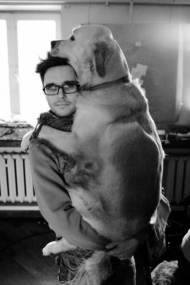 huge-dogs-feel-small-31__605