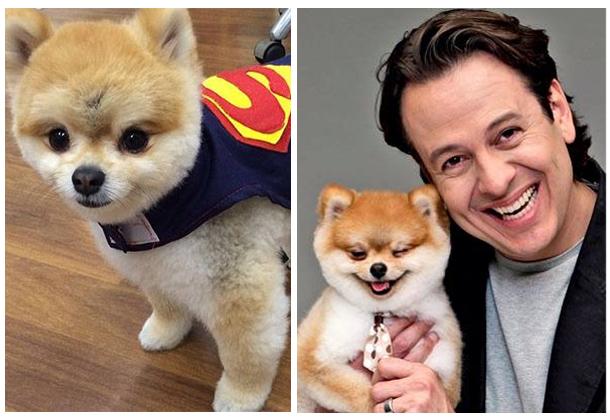 nome-cachorros-celebridades-celso-zucatelli-paçoca
