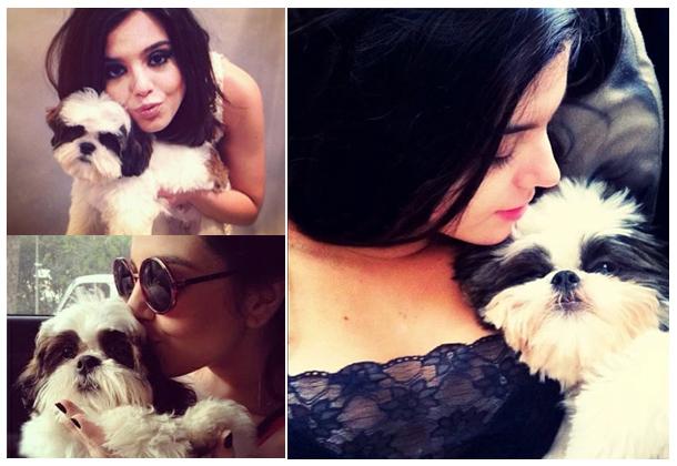 nome-cachorros-celebridades-giovanna-lancelloti-marley