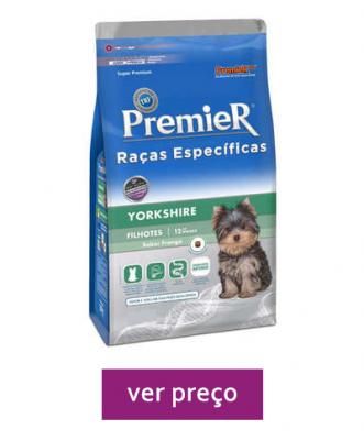premier-racas-especificas-yorkshire-filhotes