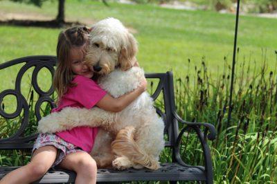 razoes pra ter um cachorro