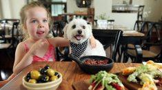 restaurante que aceita cachorro