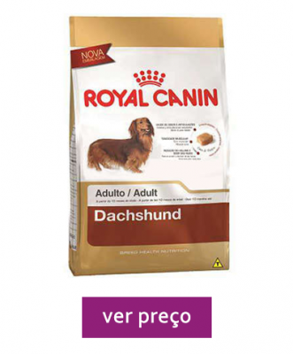 royal-canin-adulto-dachshund