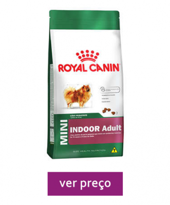 royal-canin-mini-indoor-adulto