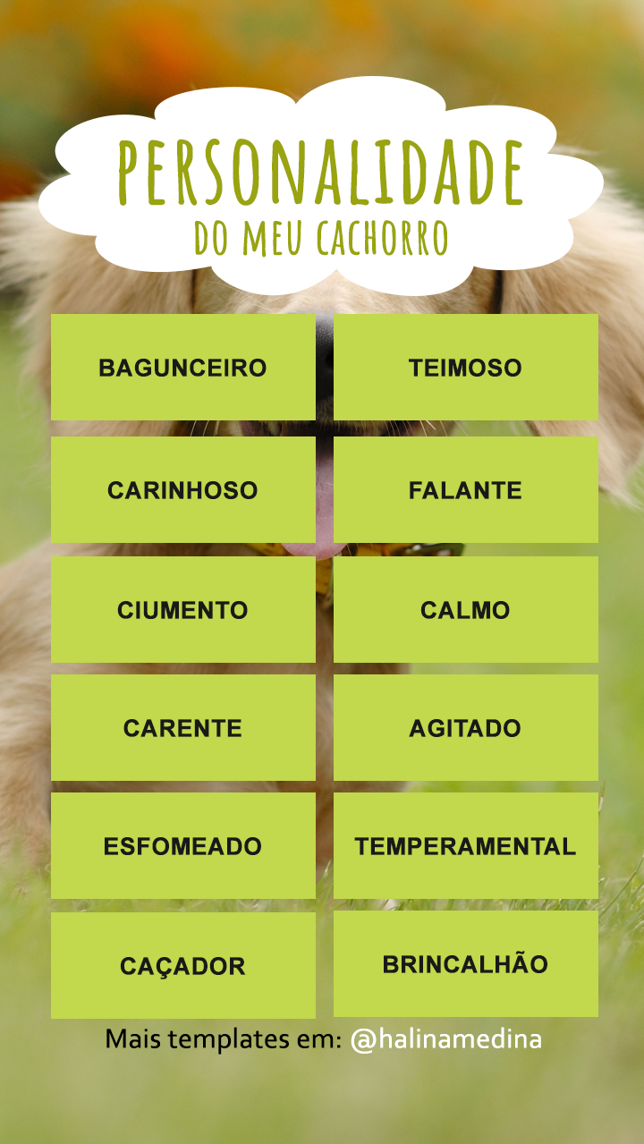 instagram-template-quiz-cachorro