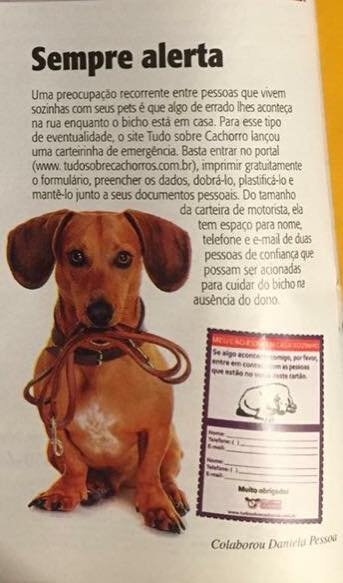 veja_rio_tudo_sobre_cachorros